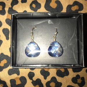 Shimmering Teardrop Earrings